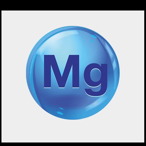 NutraZenith - 21 03 17 Bulle Magnesium