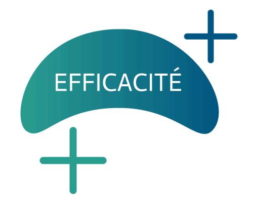 NutraZenith - NZH Pilier 2 Efficacite